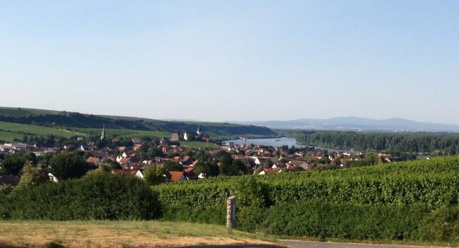 Blick von den Raddecks ins Rheintal