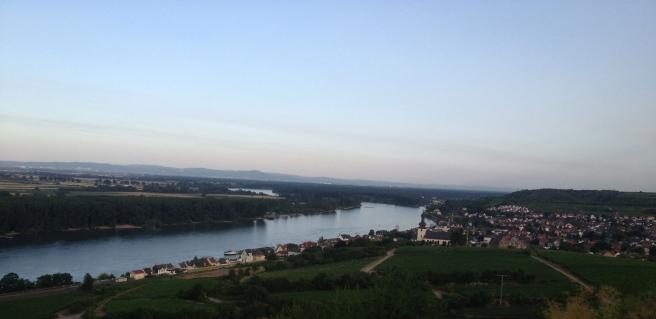 Blick von der Fockenberghütte ins Rheintal