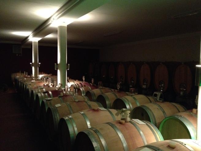 Kein altes Kellergewölbe mehr, aber sehr guter Wein:  Der moderne Keller bei den Raddecks.